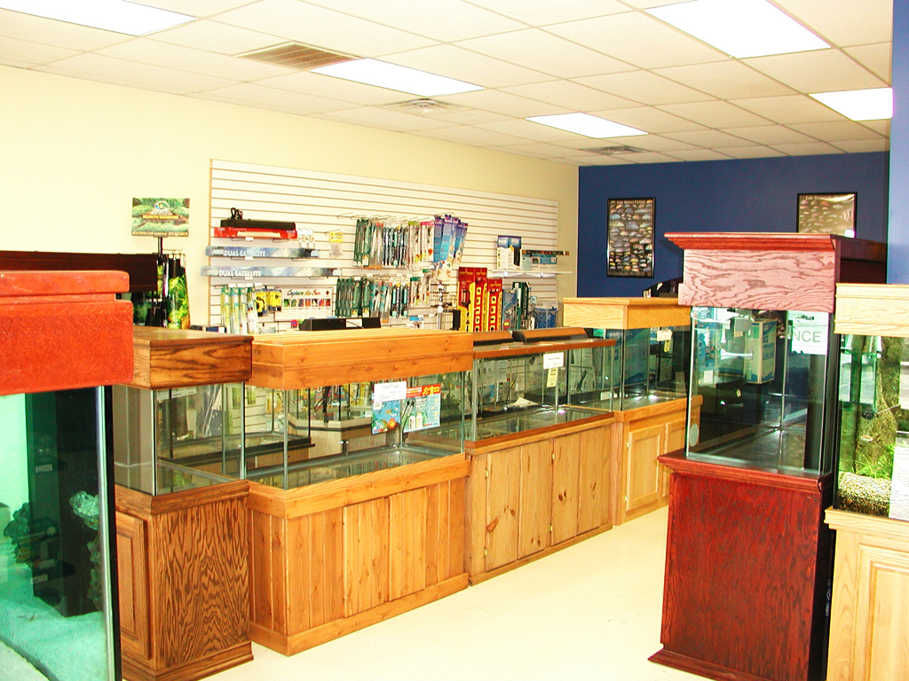 Exotic aquatics dallas aquarium dallas fish store for Fish aquarium stores